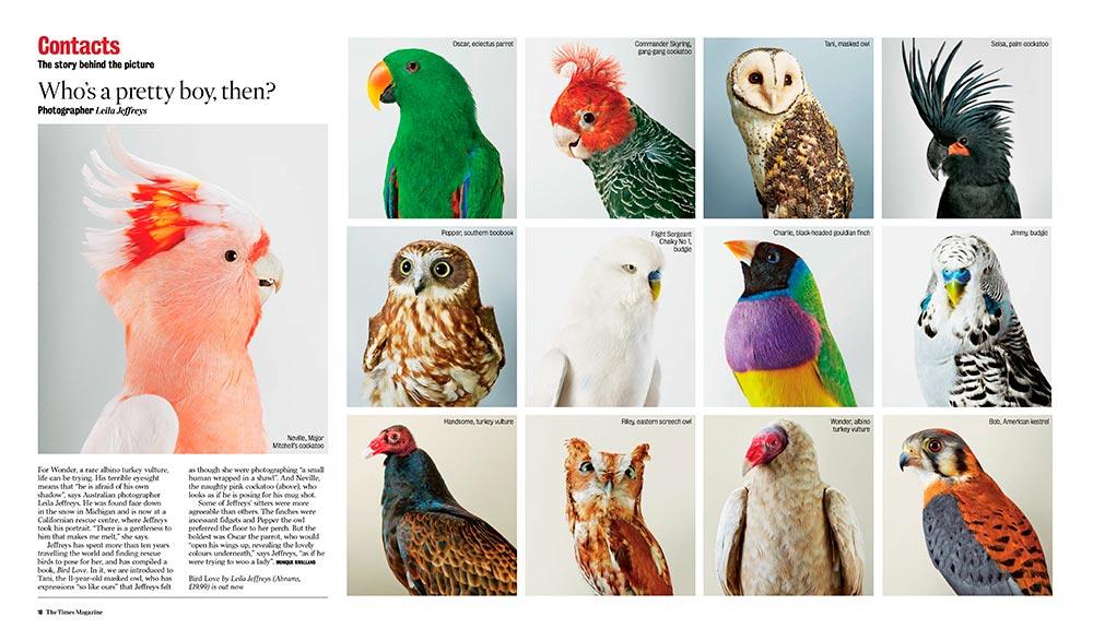The-Times-Magazine_31.10.2015.jpg