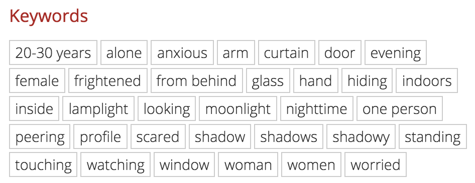 These are the keywords that book publishers would search to potentially find my image to purchase for a book cover.
