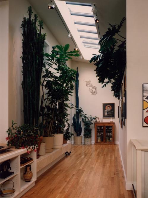 Schnall - Interior Corridor 1.jpg