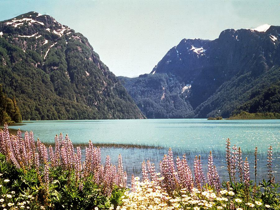 Nahuel Huapi Lake ,  Bariloche