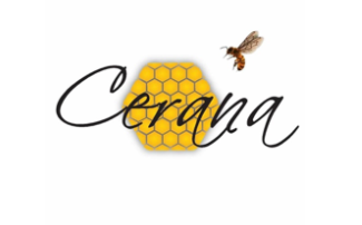 Sprout - Cerana Honey