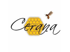 Sprout - Cerana Honey