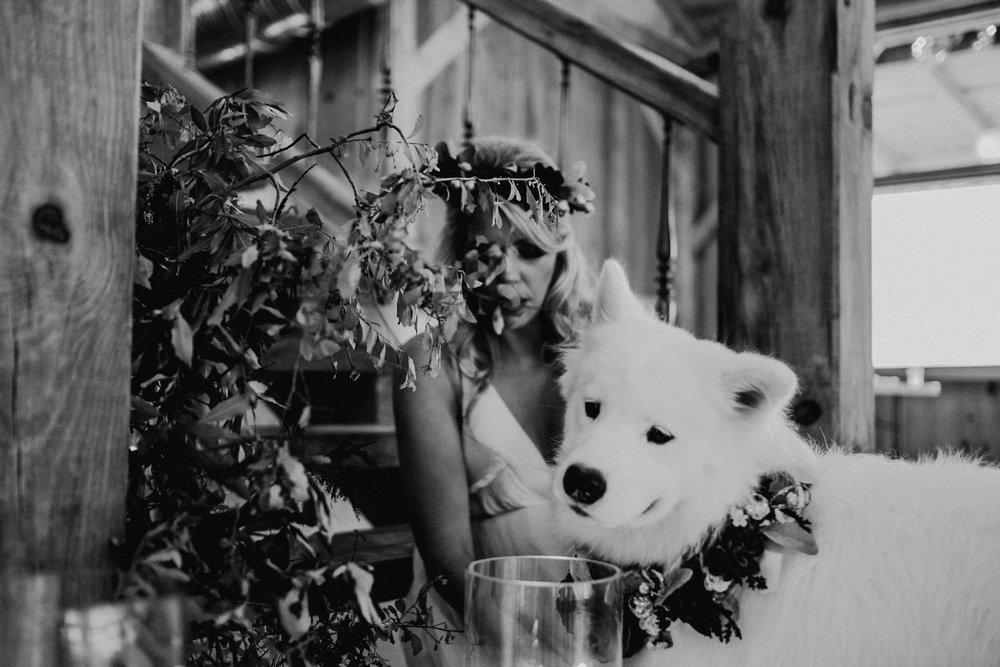 SBvisionwedding-Cottonwood-ranch-Callahan-FL-Wedding (135).jpg