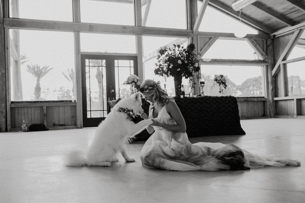 SBvisionwedding-Cottonwood-ranch-Callahan-FL-Wedding (146).jpg