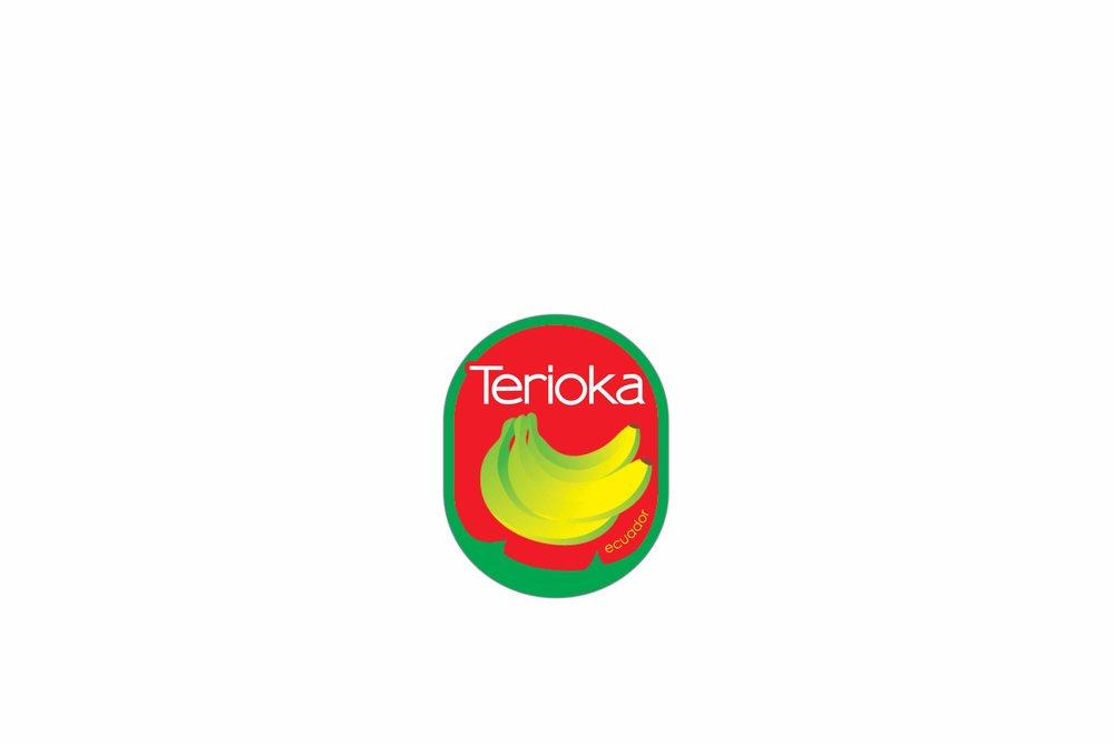 TeriokaEtiqueta.jpg