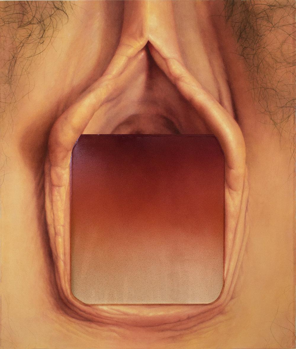 {red gradient, vagina}