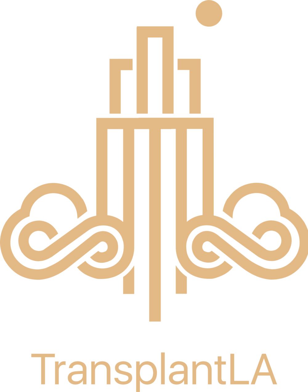 tpla logo.png
