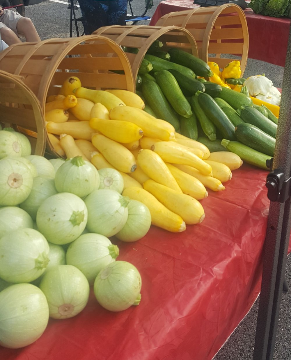Zucchini, Yellow Squash, and Globes