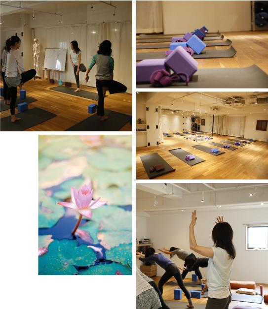 inStudio-yoga-sugata-retreats-kamakura.jpg
