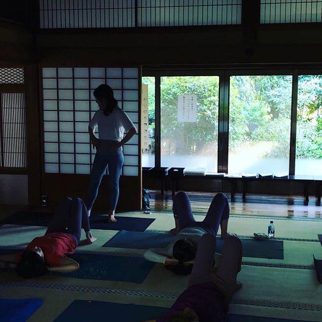 ゴールデンウィークのご予定はお決まりですか?⠀ ⠀ 今年もSUGATA鎌倉ではゴールデンウィークに特別クラスを開催予定です。⠀ ⠀ 年に1度、日頃の感謝を込めたイベントを開催しています。⠀ ⠀ 昨年は妙本寺でヨガ、ピラティスクラスを開催。⠀ ⠀ 新緑と静けさに囲まれた場所で行うクラスはすぐに定員となってしまいました。⠀ ⠀ ⠀ 今年も5/5に開催予定です。⠀ ⠀ 5/5は是非鎌倉へ。⠀ ⠀ ⠀ #sugataaoyama⠀ #sugatakamakura⠀ #sugataretreats⠀ #美しさはsugataに⠀ #kamakura⠀ #sea⠀ #beach⠀ #visitkamakura⠀ #asoview⠀ #airbnb⠀ #trip⠀ #gw⠀ #ココロ⠀ #カラダ⠀ #ショクジ⠀ #鎌倉⠀ #リトリート⠀ #大人の休日⠀ #ヨガ⠀ #ピラティス⠀ #非日常⠀ #リフレッシュ⠀ #週末鎌倉⠀ #休日鎌倉⠀ #ゴールデンウィーク⠀ #お寺ヨガ⠀ #春