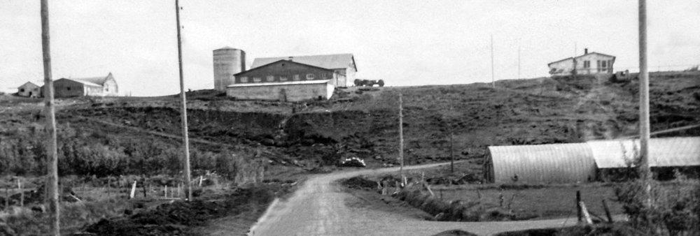 Helgahús/Laugarás I og byggingar sem því tilheyrðu 1965 (mynd: Ingibjörg Bjarnadóttir)