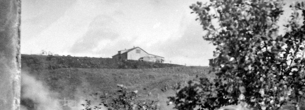 Útihús læknisins um 1950. Læknishúsið er á bakvið tréð. Myndin er tekin frá Hveratúni.