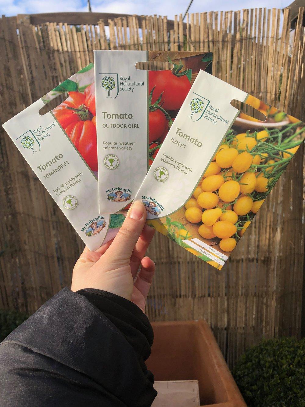 RHS Tomato seeds