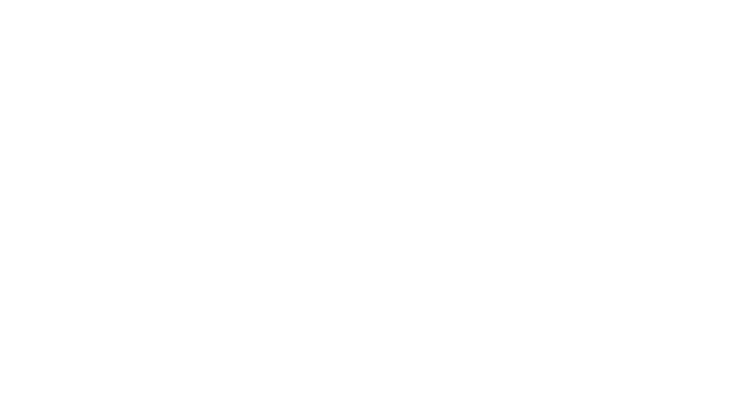 CloviSeiji Photography