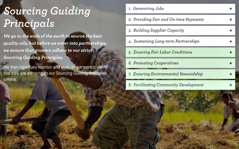 sourcing guiding principals.jpg