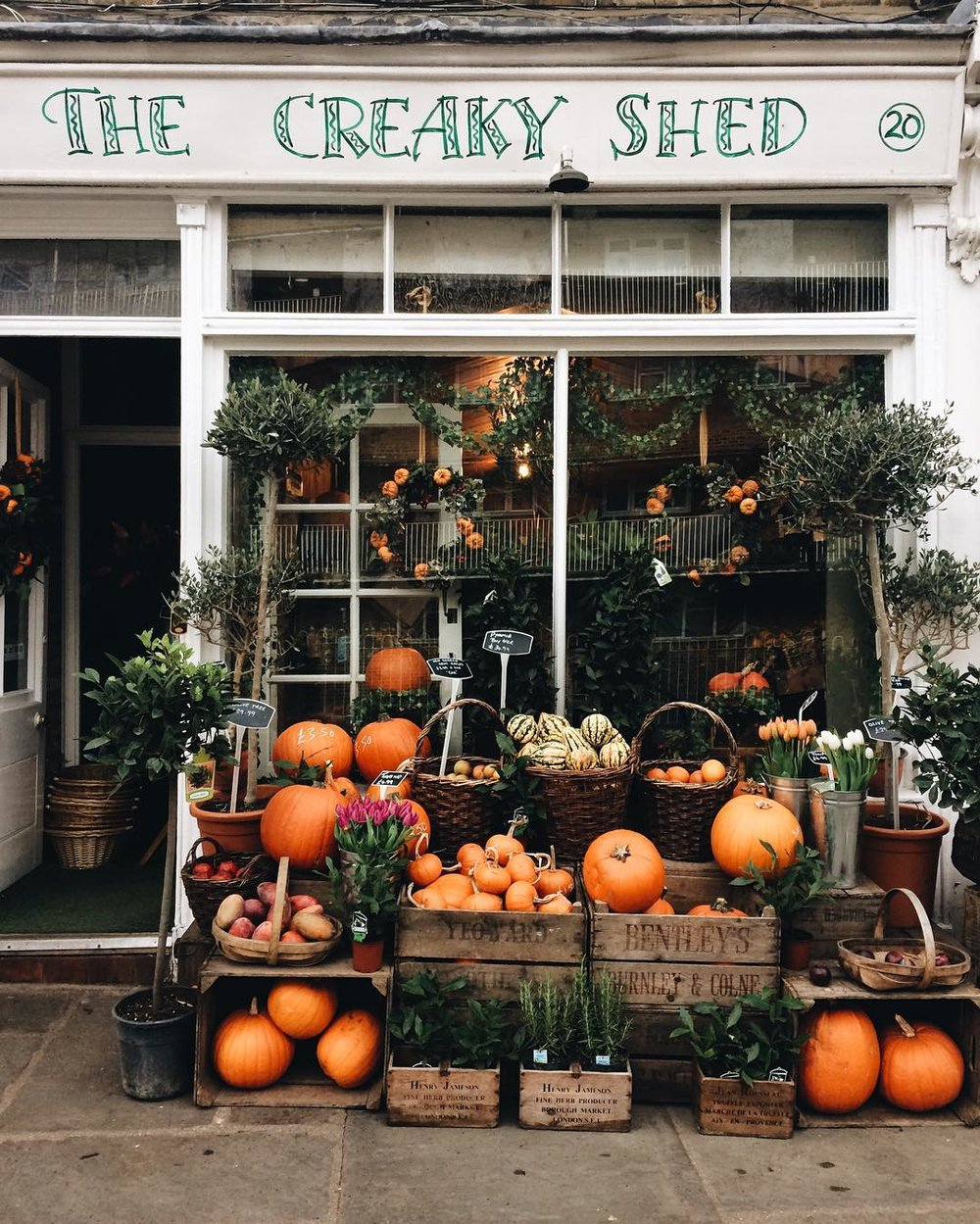 Buy your pumpkins here! Photo: @alice.and.lyra