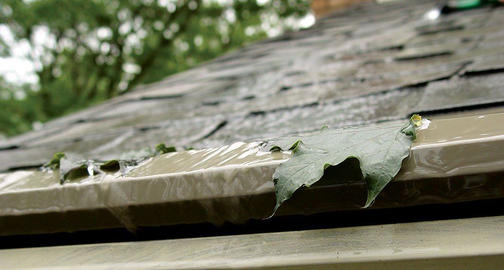 Gutter-Protection-Leafs.jpg
