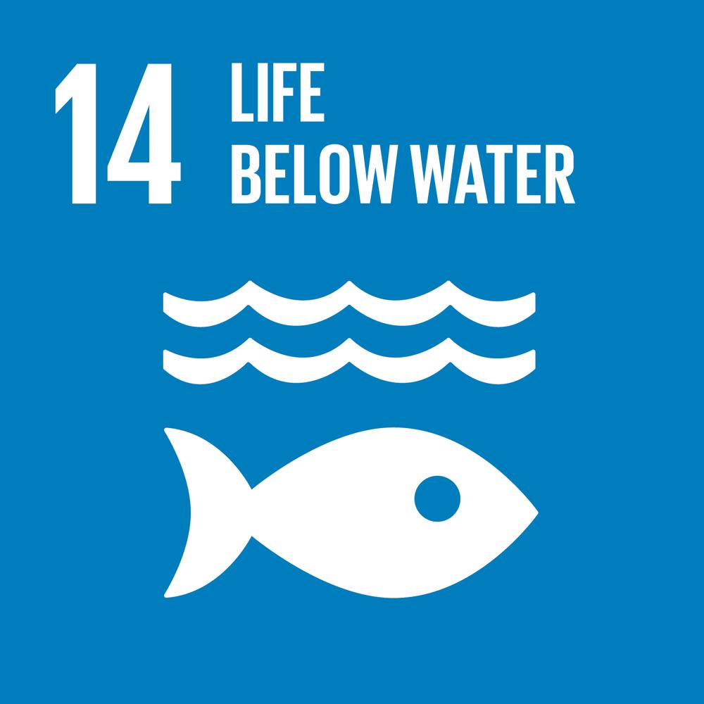 E_SDG-goals_Goal-14.png