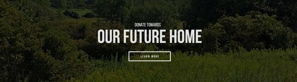 Future Home.jpg