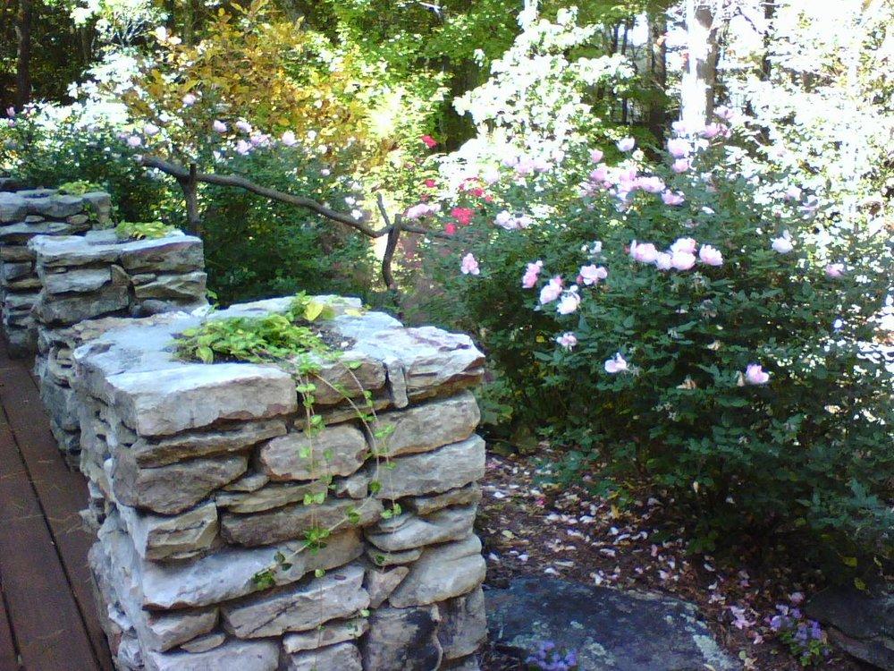 rock columns plants.jpg