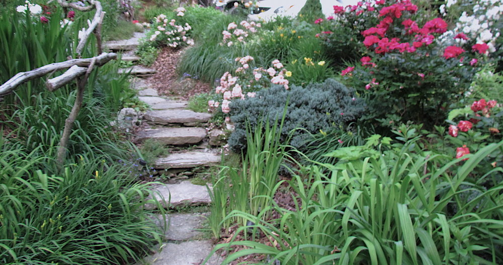 Stone stair:Roses.JPG