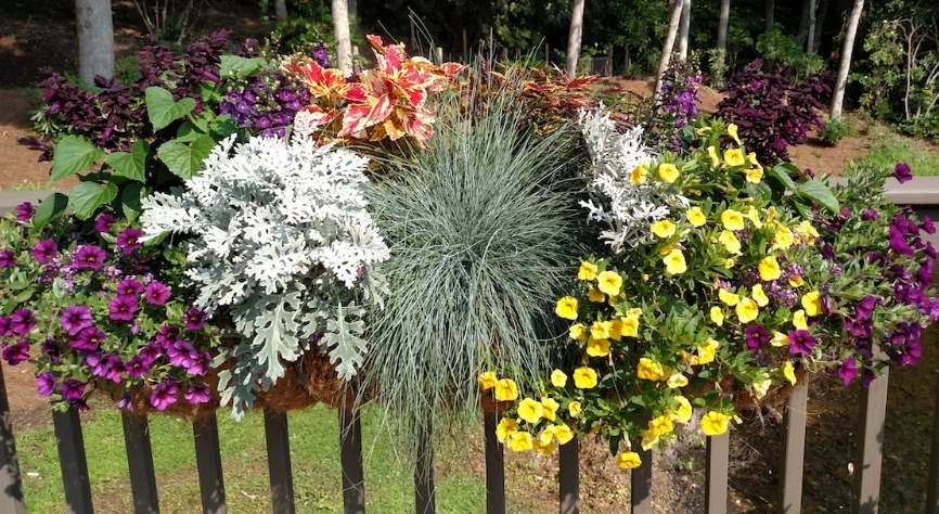 Floral railing ye:pu.jpg