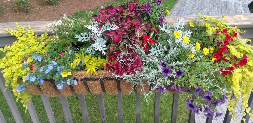 floral railing jpg.jpg