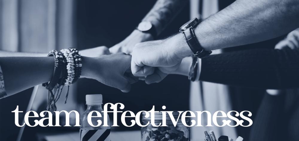 OfferingsPageHeaders-TeamEffectiveness.png
