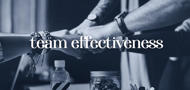 SuccessPageButtons-TeamEffectiveness.png