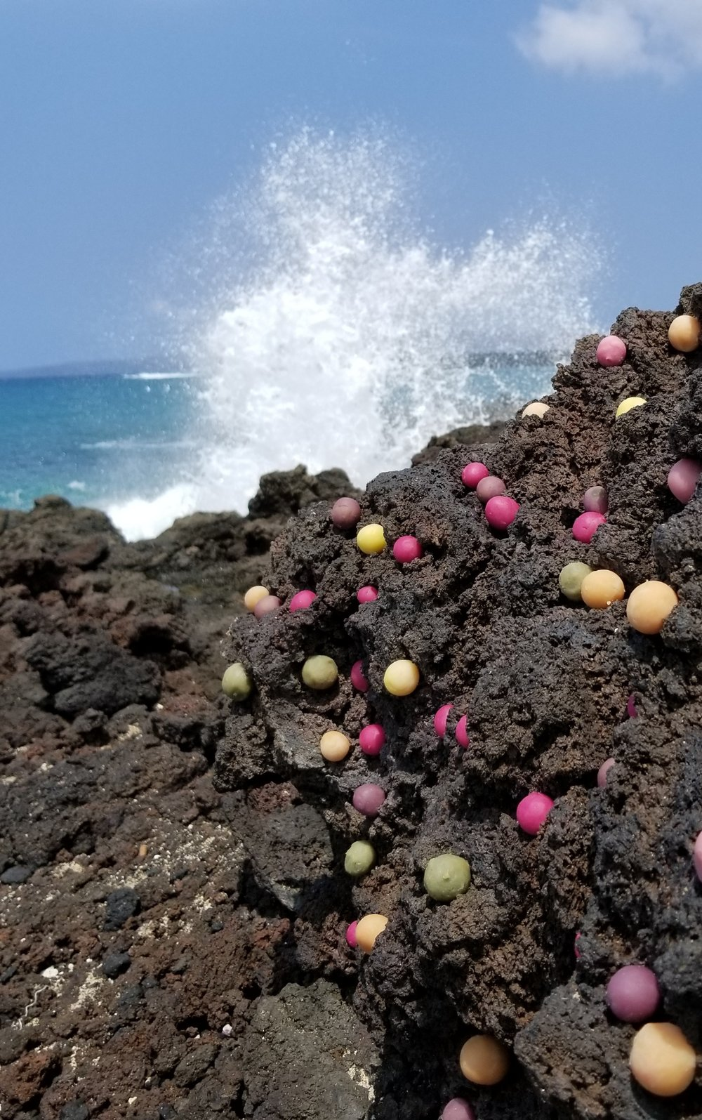 Feeling the ocean spray in my face while installing organically dyed dough at La Perouse Bay in Maui.