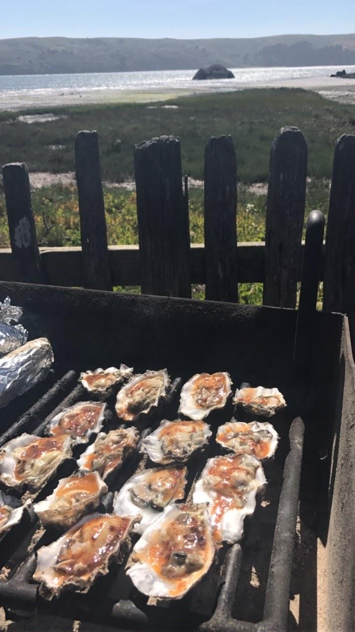 hog island oyster farm.