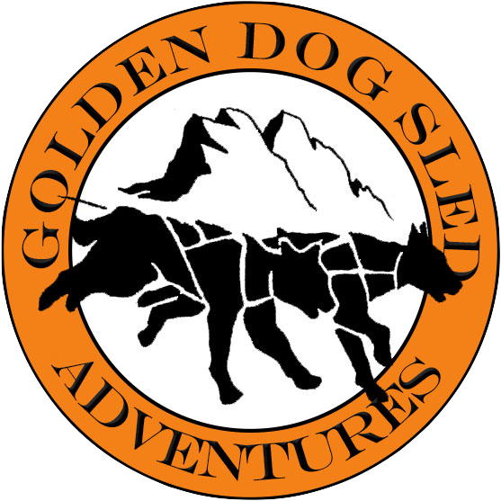 Golden Dog Sled Adventures
