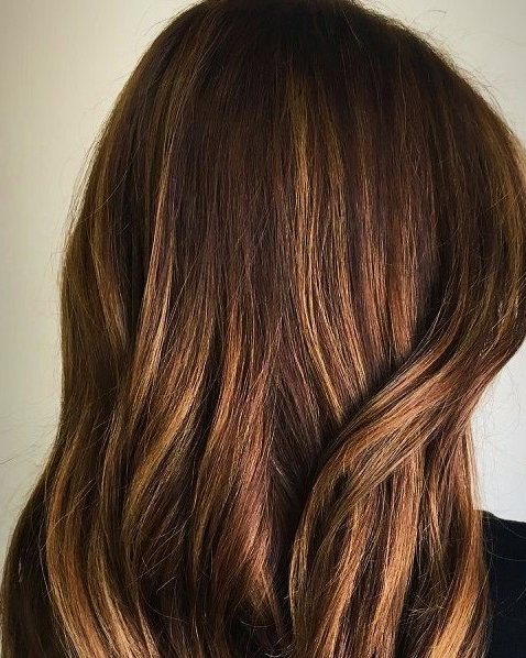 Copper and Carmel Balayage  Hairbabestudio.com  Top Hair Salons Asheville,NC