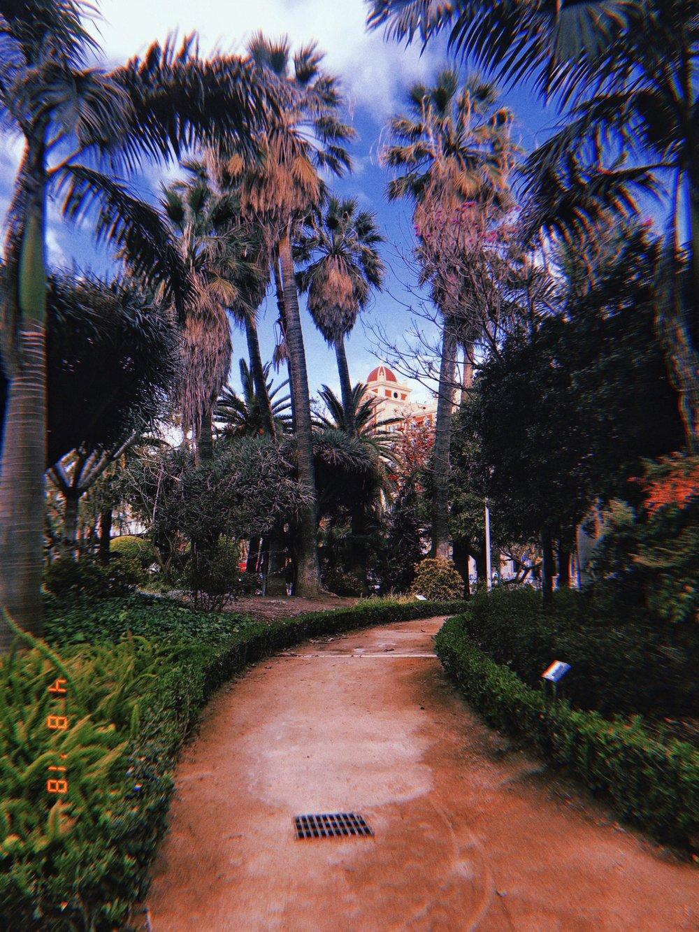 malaga_plants.jpg