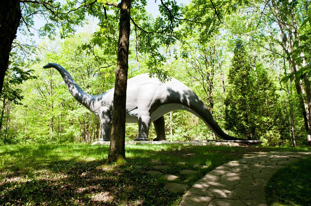 SD-Prehistoric World-25.jpg