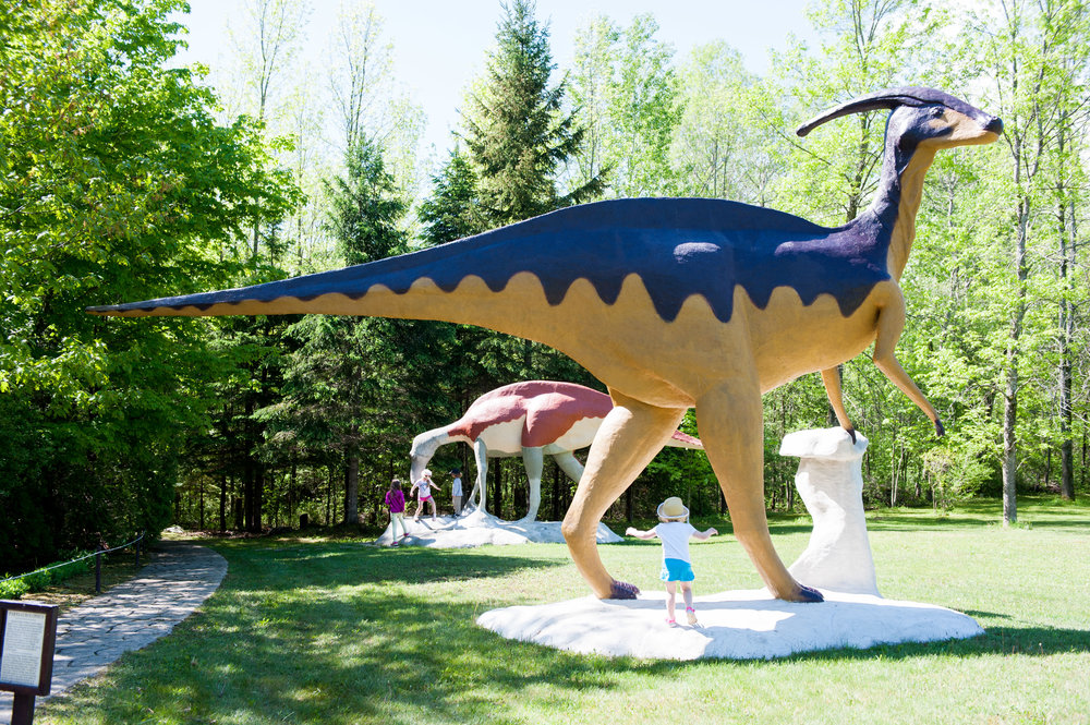SD-Prehistoric World-14.jpg
