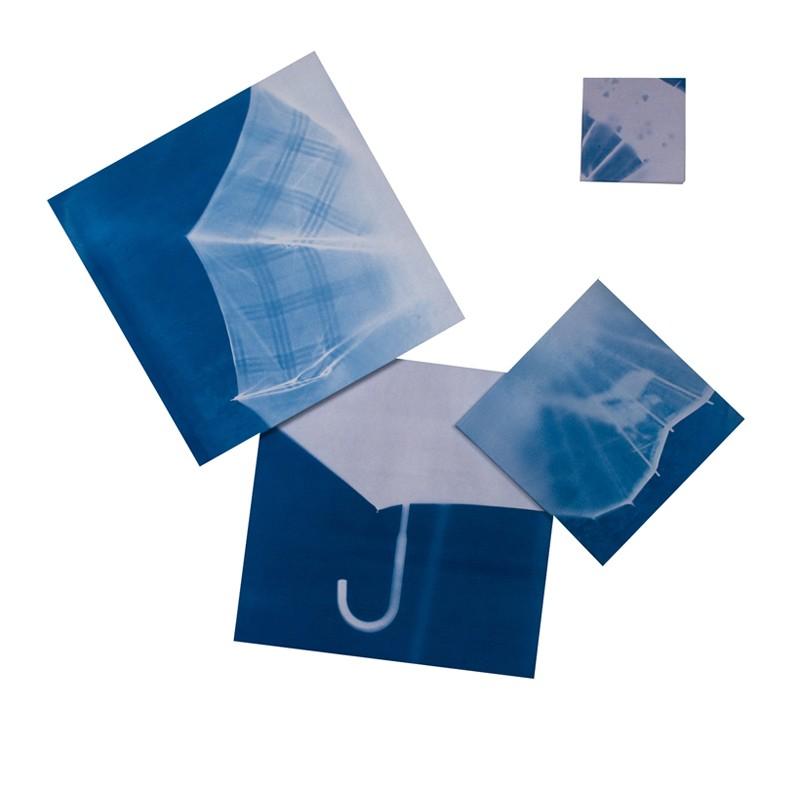penumbrellaweb-800x787.jpg