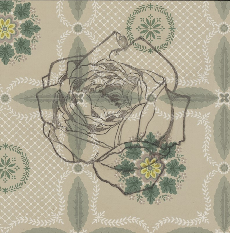 english_rose,_cressida_15x15_charcoal_on_united_wallpaper_sample_2013_jaap-792x800.jpg