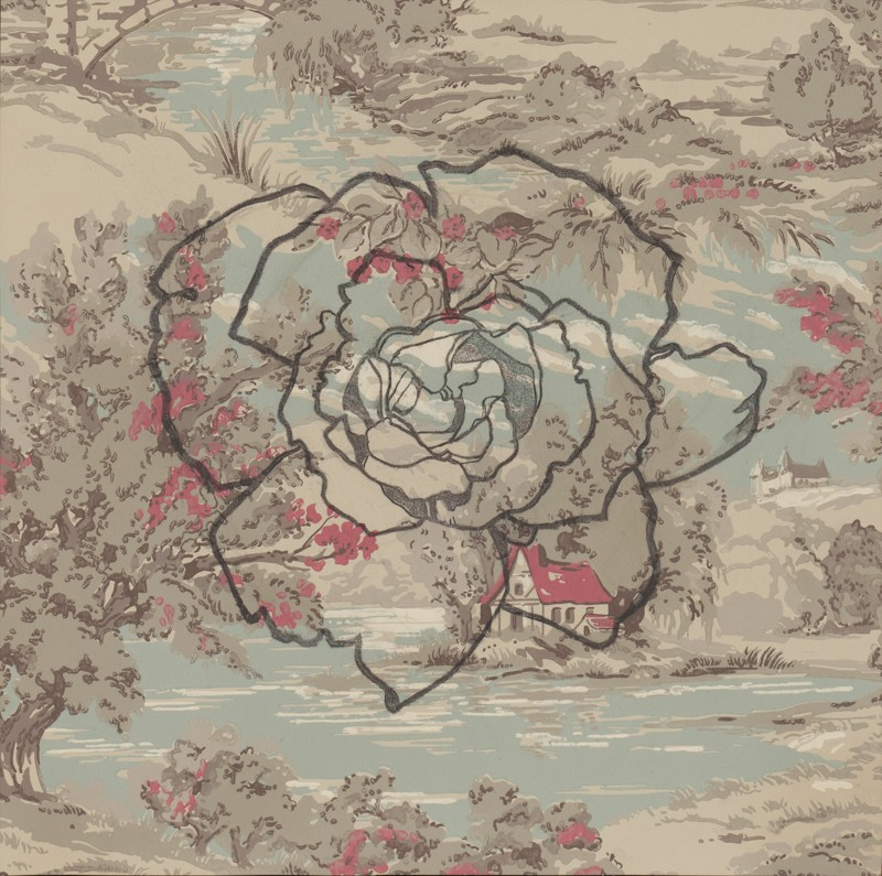 english_rose,_sir_clough_15x15_charcoal_on_united_wallpaper_sample_2013_jaap-800x795.jpg