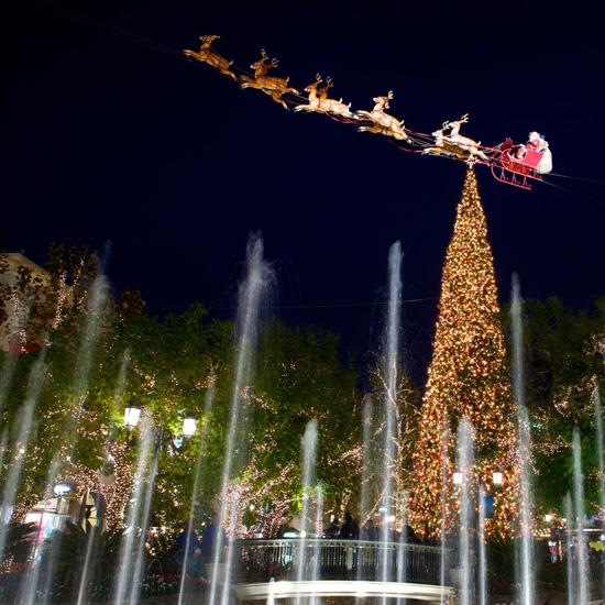 A California Christmas At The Grove