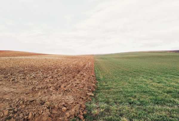 lAND rEFORM - Photo by Elizabeth Lies on Unsplash