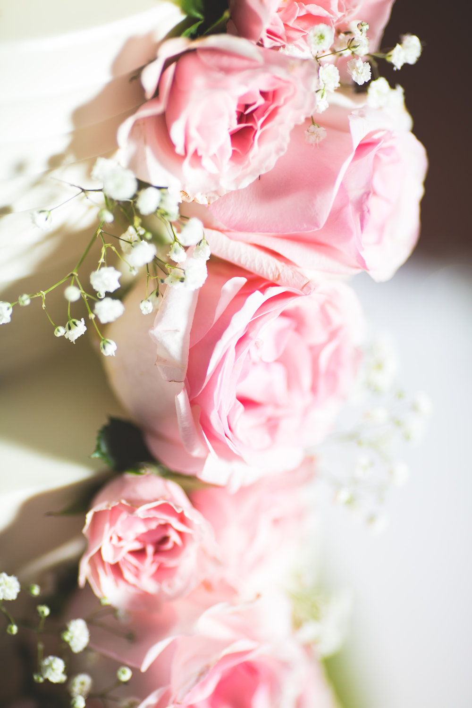 karina_asresh_wedding-0662.jpg