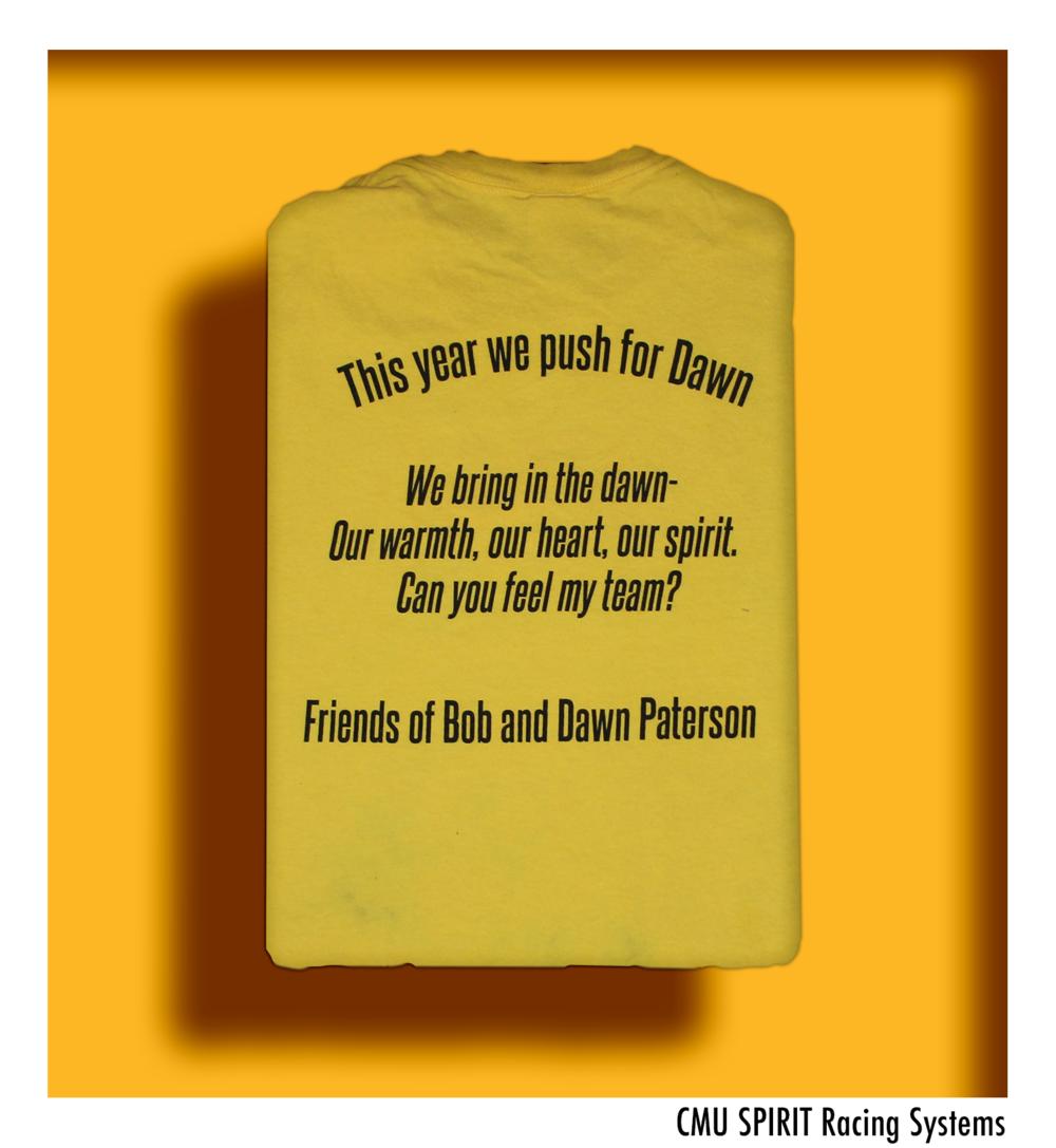 2013 Shirt Back