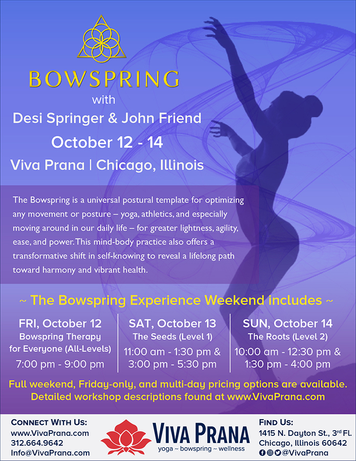 Viva Prana_Yoga_Bowspring_Wellness_Chicago_Upcoming_Events_Bowspring with Desi Springer and John Friend.jpg
