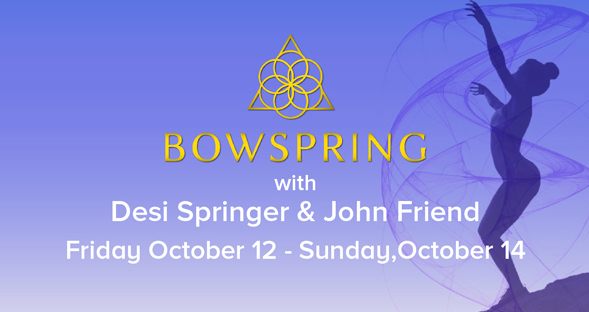 Viva Prana_Yoga_Bowspring_Wellness_Chicago_Upcoming_Events_Bowsping_Desi Springer_John Friend.jpg