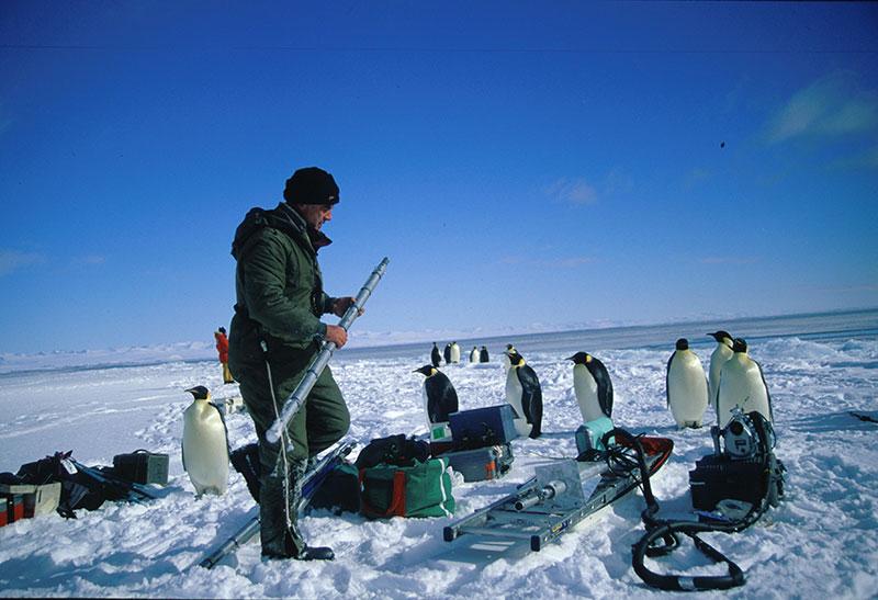 Cameraman-with-penguins_WEB.jpg