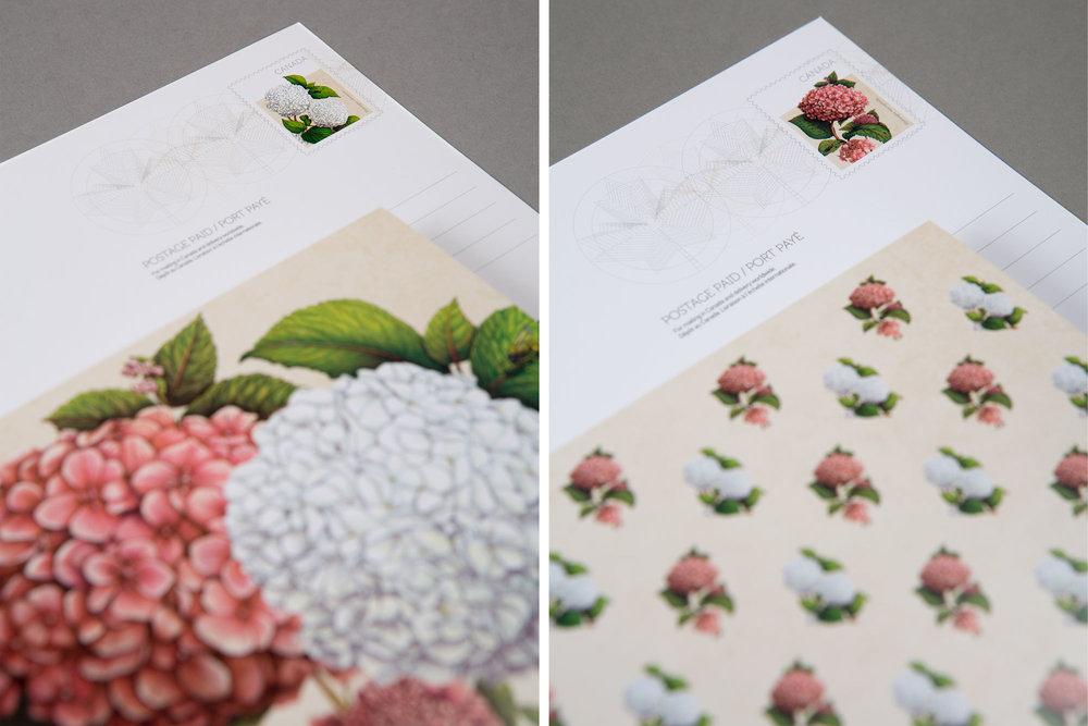 canada-post-hydrangea-stamp-dyptech-sputnik-design-partners-toronto.jpg