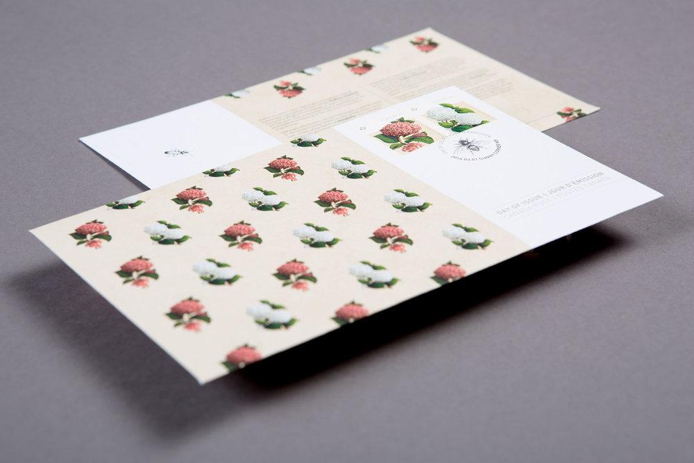 canada-post-hydrangea-stamp-2-sputnik-design-partners-toronto.jpg