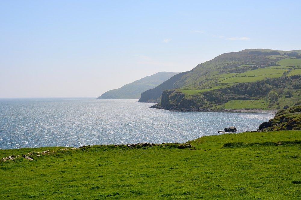 Four Celtic crosses - Traveller Reviews - Kells Monastic Site