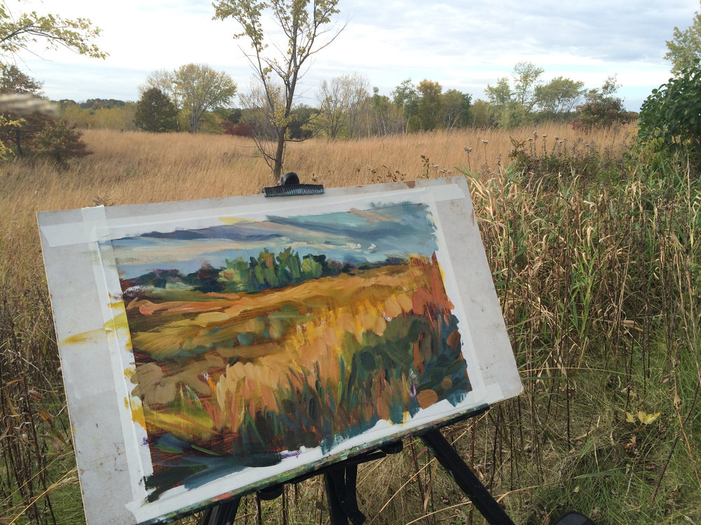 In process study at Lebanon Hills Regional Park - restored prairie.